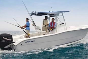 Photo du bateau: Barracuda